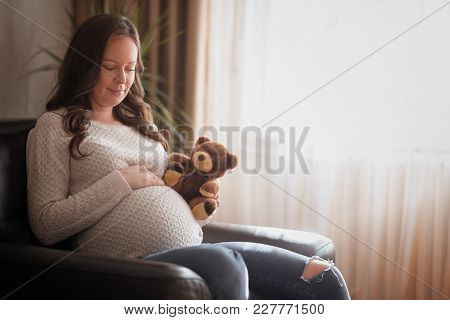 Teddy Bear And Belly