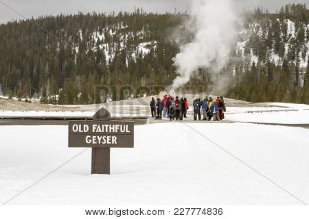 Tourists At Old Faithful Geyser, Yellowstone National Park, Wyoming