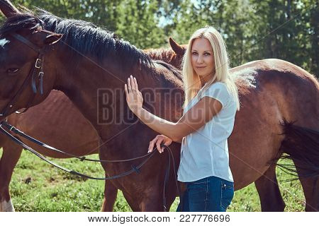 Charming Beautiful Blonde Wearing A White Blouse And Jeans Standing With A Horse In A Countryside.