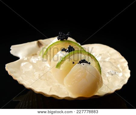 Raw Scallops With Lime In Shell And Ice Ready To Cook On Black Background