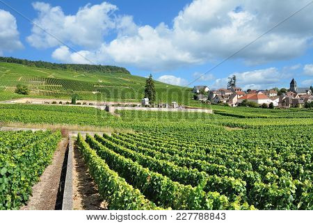 Famous Wine Village Of Oger In Champagne Region,marne Department,france
