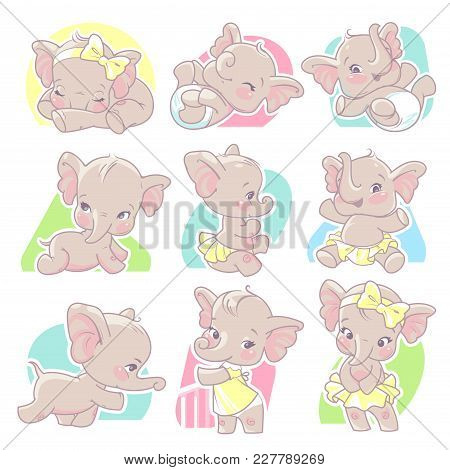 Cute Little Baby Elephant Girl. Set With Baby Illustrations From Birth To One Year Old. Baby Growth