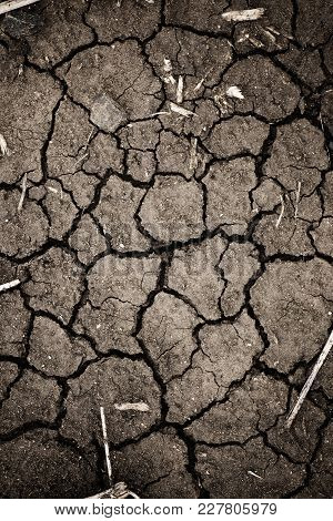 Closeup Of Cracked Earth.