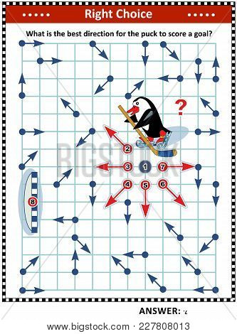 Ice Hockey Themed Visual Puzzle With Penguin The Hockey Player: What Is The Best Direction For The P