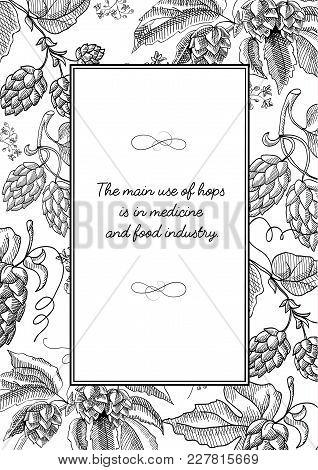 Black Colored Square Frame With Hop Cartoons With Berries, Foliage And Many Decorative Squiggles And