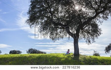 Little Girl And Her Doll Sitting  Under Acorn Tree. Maternal Instinct For Children Concept