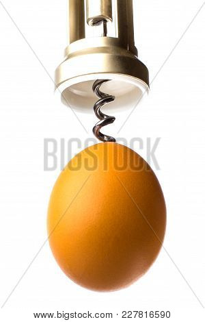 Corkscrew Opens The Egg. The Concept Of Abortion. Isolated