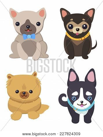 Set Of Pictures With Cute Dogs Vector Illustration Of Grey Black And Brown Puppies With Black Eyes,