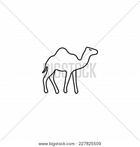 Egyptian Camel Icon In Line Style. Egypt Camel Object Vector Illustration Isolated On White Backgrou