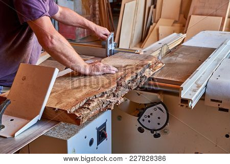 Panel Squaring Saw Before Sawing A Thick Unedged Oak Board
