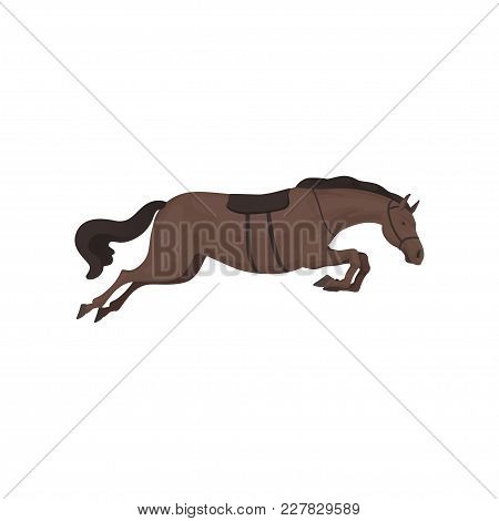 Black Running Horse, Equestrian Professional Sport Vector Illustration On A White Background