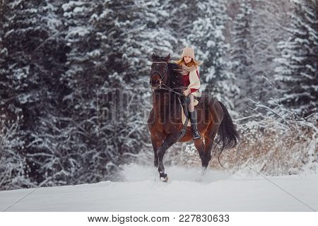 Winter Walk On Horse. Rder Young Girl Jumps On Horse In Snow, In Background Forest