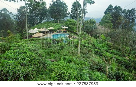Ella, Sri Lanka - Jan 2, 2017: Beautiful Hotel Swimming Pool Surrounded By Forest And Green Tea Plan