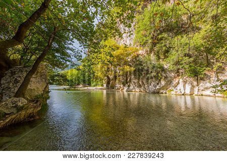 Trees And Natural Vegetation At Acheron River In Greece