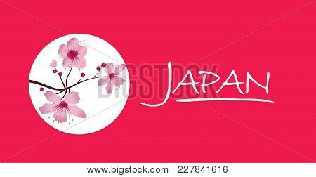 Sakura Cherry Blossoms With Text