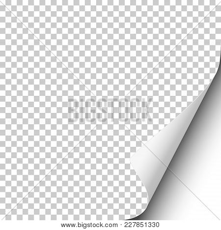 Page Curl On Blank Transparent Sheet Of Paper With Shadow And White Next Page. Element For Ad. Vecto