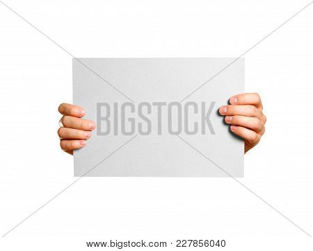 Hands Holding A Grey Clean Blank Sheet Of A4. Isolated On Grey Background.
