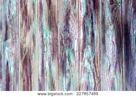 Wooden Texture. The Motley, Vertical, Old, Shabby Pine Wood Background.
