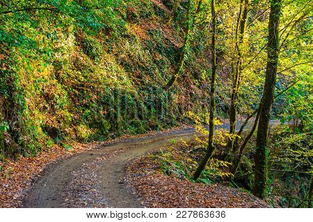Landscape Of A Curved Mountain Road With Steep Wall And Varicolored Trees In Sunny Autumn Day, Sochi