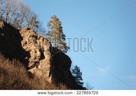 Lonely Evergreen Pine Stands On The Edge Of A Cliff On A Mountain Slope Against A Blue Sky In Autumn