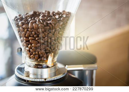 Modern Coffee Grinder Fully With Medium Roasted Coffee Beans In Pot Close Up.