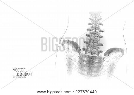 Human Spine Hip Lumbar Radiculitis Pain Low Poly. Geometric Polygonal Particle Triangle Point Line F