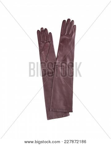 Long Brown Female Gloves Made Of Soft Leather