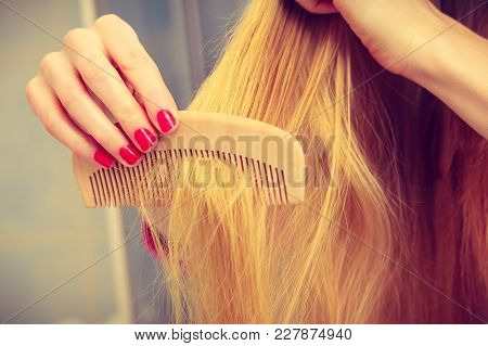 Female Hand Red Nails Manicure Holding Wooden Comb, Combing Long Blonde Hair In Bathroom Closeup