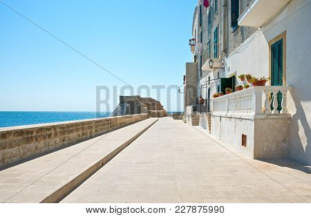 Monopoli, Italy, View Of The Houses Of The Seafront