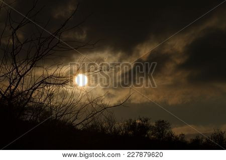 Sunset, Clouds To The Skylight, Magical Background, Bushes And A Lonely Tree, Back Light, Storm, Dar