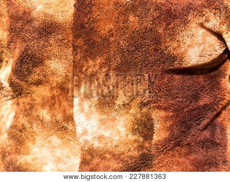 Brown Coat As Background . Photo Of An Abstract Texture