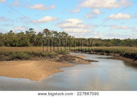 Marsh Wetlands In Charleston, South Carolina