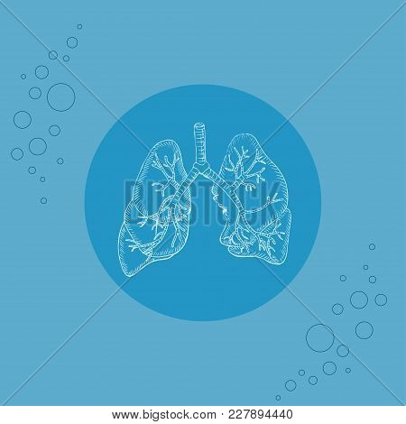 White Human Lungs And Bronchi On Round Substrate Placed On The Color Background With Air Bubbles. Hu