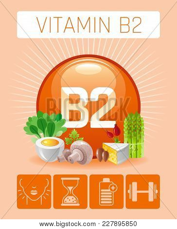 Riboflavin Vitamin B2 Rich Food Icons. Healthy Eating Flat Icon Set, Text Logo, Isolated Background.