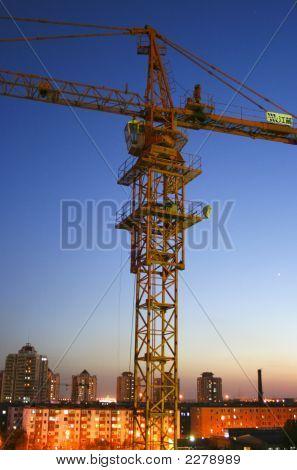 Crane In The Night