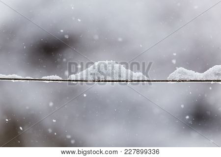 Snow On The Clothesline . In The Park In Nature
