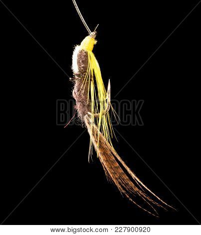 Fly To Catch Fish On A Black Background .