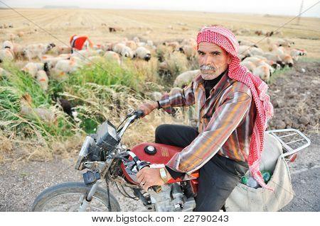 Arabic turkish senior man on cycle, sheppard