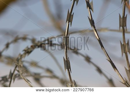 War Barbed wire, a symbol of war and terror on an abstract background.