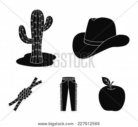 Hat, Cactus, Jeans, Knot On The Lasso. Rodeo Set Collection Icons In Black Style Vector Symbol Stock