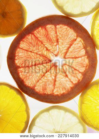 Citrus Pattern Of Orange Lemon And Grapefruit Slices. Citrus Fruits Shine Through The Light. Differe