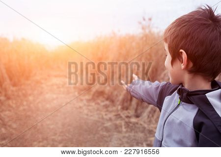 Cute Boy Is Playing In The Bulrush And Demonstrate His Wizard Magic