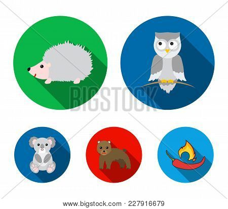 Koala, Owl, Bear, Hedgehog.animal Set Collection Icons In Flat Style Vector Symbol Stock Illustratio