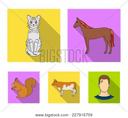 Horse, Cow, Cat, Squirrel And Other Kinds Of Animals.animals Set Collection Icons In Flat Style Vect