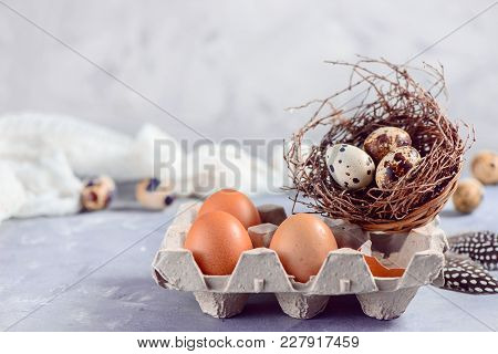 Brown Eggs In Craft Carton Pack With Quail Eggs In A Nest On A Concrete Background. Fresh Ingredient