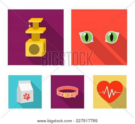 Cat's-eye, Cat Lodge, Collar, Package With Food.cat Set Collection Icons In Flat Style Vector Symbol
