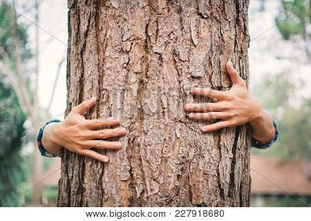 Man Hug Big Tree Color Of Hipster Tone Selective Soft Focus, Concept Nature And People Protect Envir