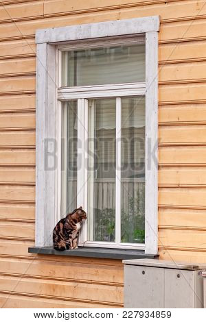 A Cat Wants To Get Into A House At The Kadriorg Area Of Tallinn, The Capital Of Estonia. You Can See