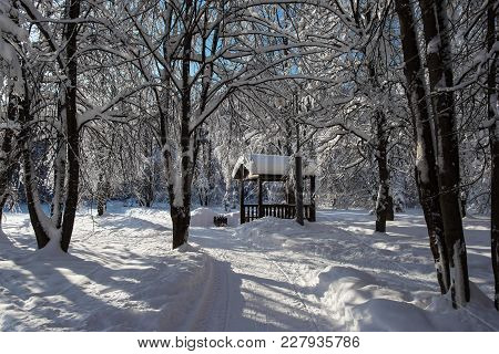 Summerhouse In The Park After Heavy Snowfall