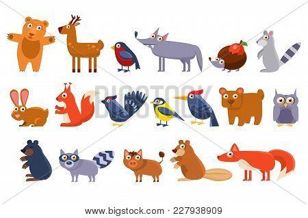 Wild Forest Animals Set, Cute Cartoon Bear, Bird, Hedgehog, Wolf, Raccoon, Elk, Deer, Rabbit, Squirr